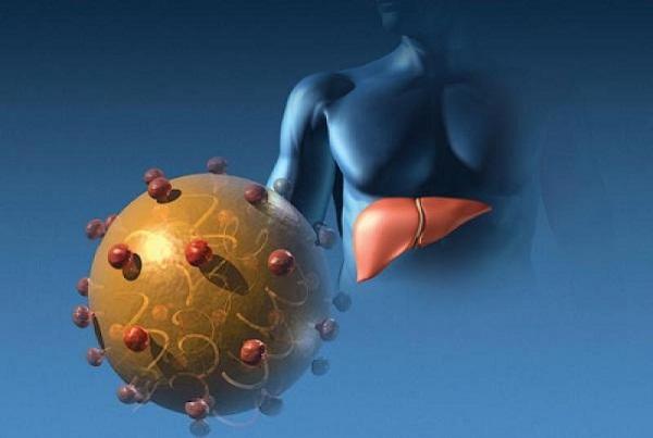 вирусные гепатиты, прививка от гепатита