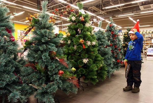 новый год, как выбрать новогоднюю ель, как выбрать елку